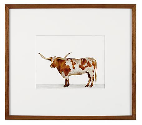 Sharon Montrose, Longhorn Steer, 2013
