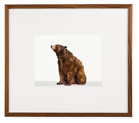 Sharon Montrose, Bear