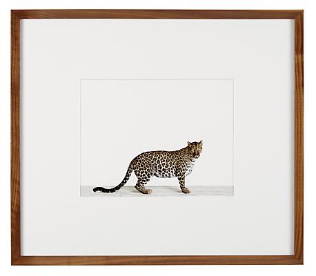 Sharon Montrose, Leopard, 2013
