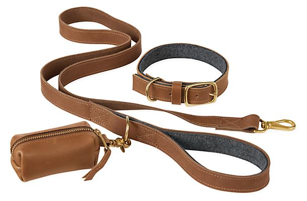 Miles Large Dog Collar/Leash/Waste Bag Holder