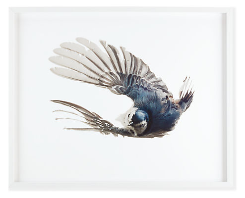 Front view of Paul Nelson, Nuthatch, 2011
